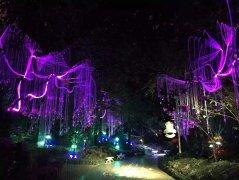 上海光纤灯对照明行业的影响